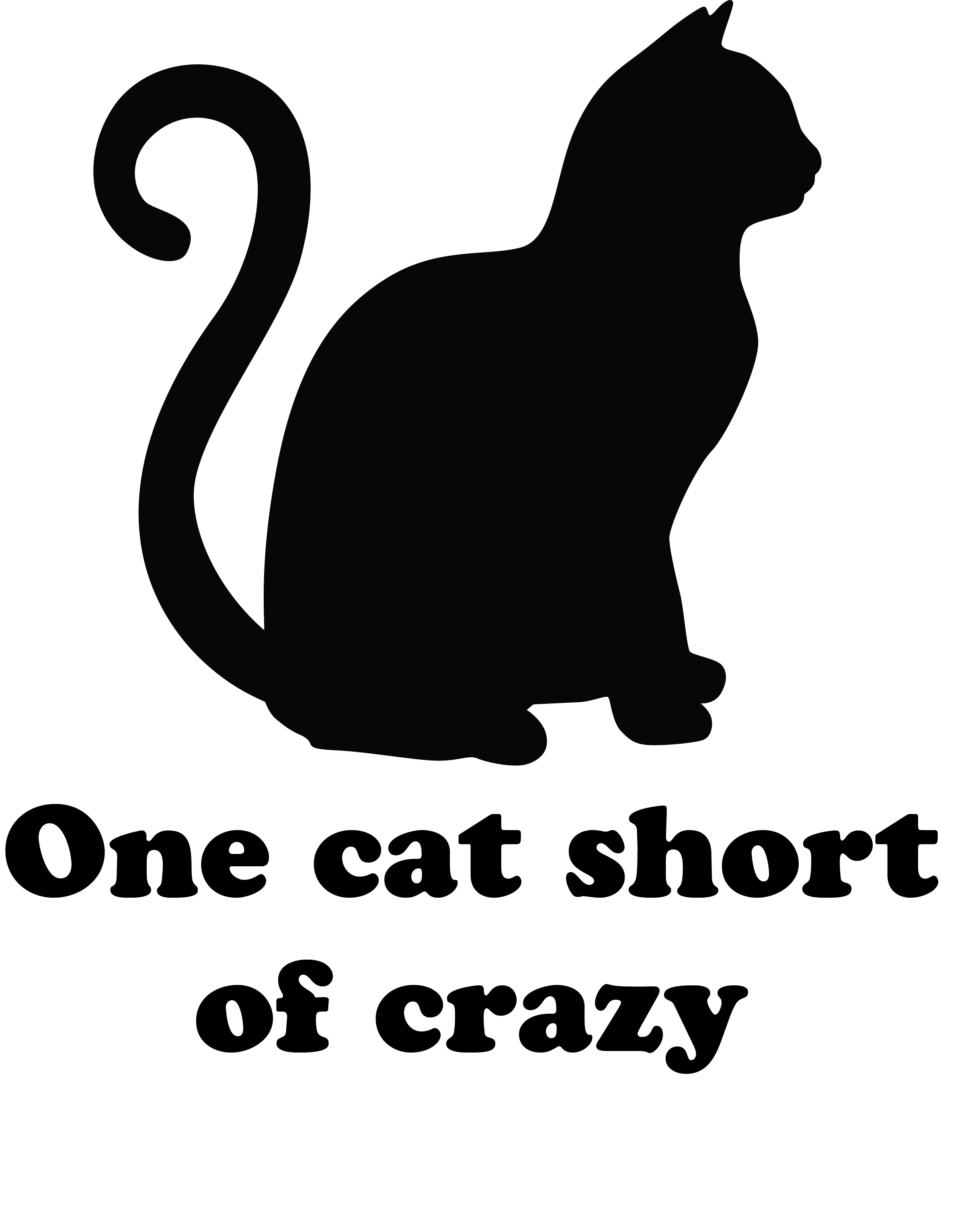 one cat short of crazy-01